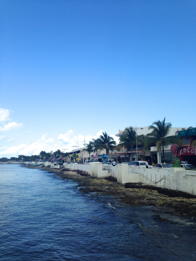 San Miguel, Cozumel  |Scones in the Sky