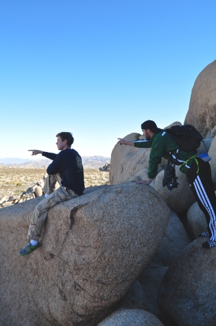 Joshua Tree National Park | Scones in the Sky Blog