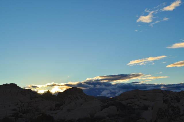 Sunset in Joshua Tree | Scones in the Sky Blog